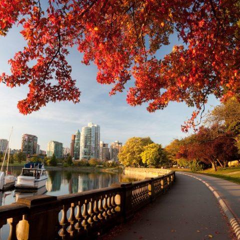 ПМЖ в Квебеке – причины приостановки инвестиционной программы