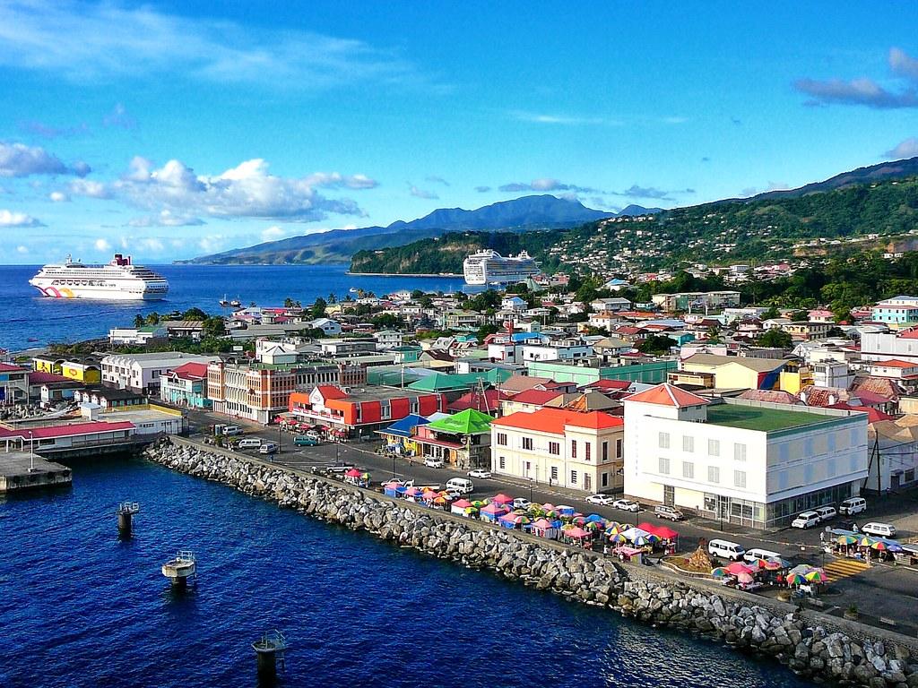Виза для предпринимателей на Доминике